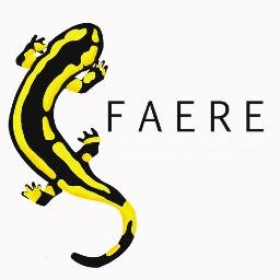 Views from Research – No. 4 | FAERE 2016