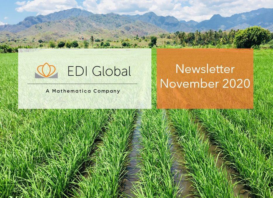 EDI Global Newsletter – November 2020